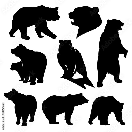 wild grizzly and brown bear silhouette set - walking, standing, rearing up animals black vector outlines Wall mural