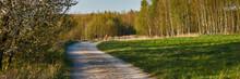 Spacerujący Ludzie Na Polnej Drodze W Otoczeniu Wiosennej Przyrody