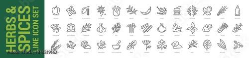 Fototapeta Herbs & spices line icon set. Vector isolated outline illustration obraz