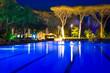 Leinwanddruck Bild - piscina con pineta in notturna