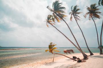Palmy i plaża.