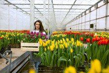 Girl Worker With Tulips,Beauti...