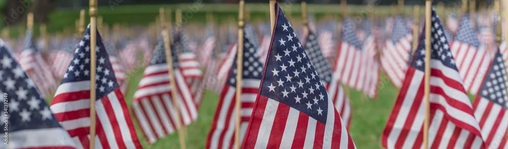 Fototapeta Panoramic row of lawn American flags display on green grass on Memorial Day in Dallas, Texas, USA
