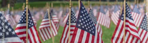 Valokuva Panoramic row of lawn American flags display on green grass on Memorial Day in D