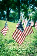 American Flags Display On Gree...