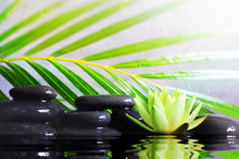 Spa Concept With Wet Black Sto...