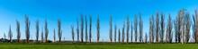 Panorama A Row Of Italian Popl...