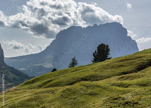 Obraz na plátně Dolomity. Sassolungo - widok z otoczenia Val Gardena