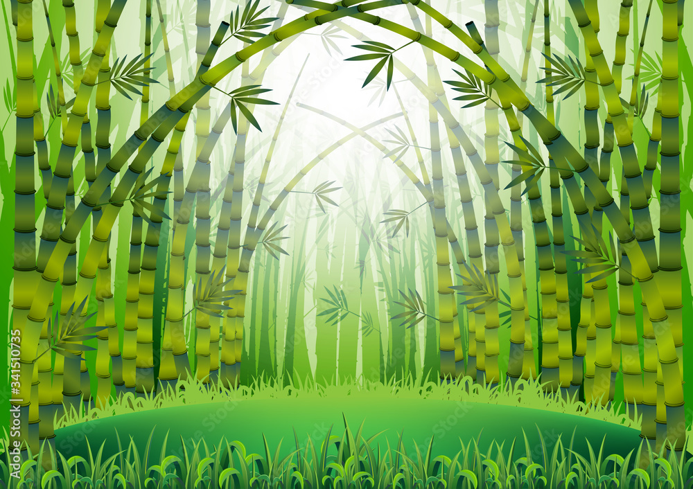 Fototapeta Green bamboo stems with leaves . Cartoon Bamboo trees inside the forest . Asian natural jungle landscape background - Vector
