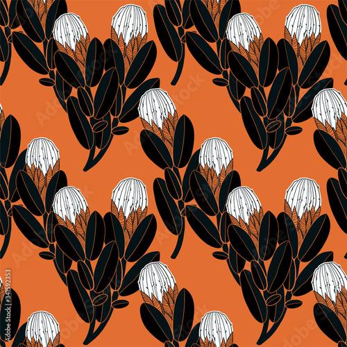 Papel de parede Protea or sugarbush flower seamless pattern exotic vintage minimalism aesthetic, retro background