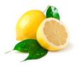 Leinwanddruck Bild - Lemon