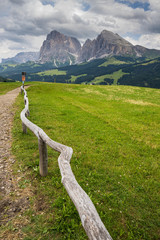 Sassolungo e Sassopiatto dall'Alpe di Siusi, Dolomiti