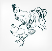 Chicken Cock Vector Illustration Japanese Chinese Ink Line Sketch Style