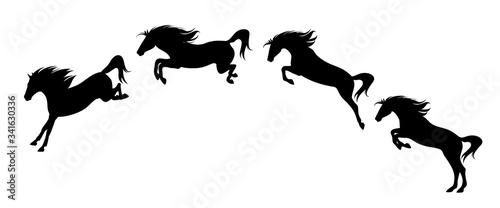 Fototapeta horse jump motion phases - black vector side view silhouette set of free mustang rushing forward obraz