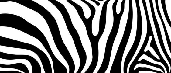 Fototapeta Zebry Vector seamless background illustration inspired by animal and nature design pattern of wild African giraffe skin print