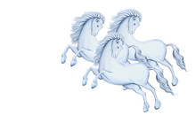 Three White Horses In Gallop. Winter Months. Clip Art On White Background