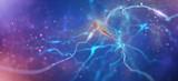 Neurons and nervous system. 3d render of nerve cells