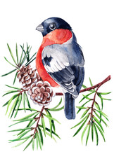 Watercolor Christmas Card With...