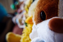 Close-up Of Stuffed Toys In Shop