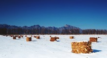 Idyllic Shot Of Hay Bales In Snow Landscape Against Clear Blue Sky