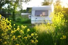 Caravan Trailer Parked In A Gr...