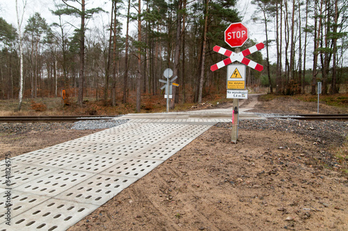 level crossing in a forest Canvas-taulu