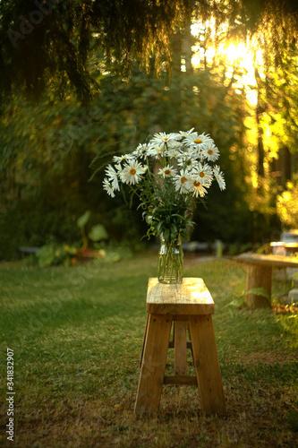 Fototapety, obrazy: flowers in a garden