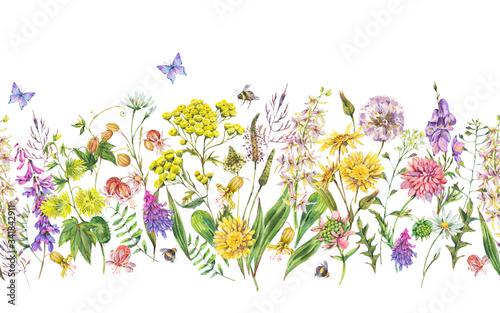 Leinwandbilder - Watercolor summer meadow flowers, wildflowers seamless border.