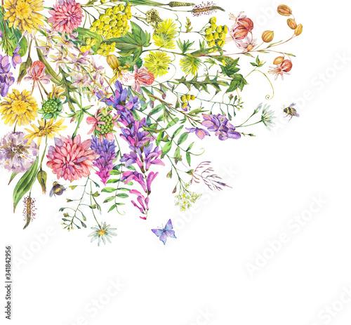 Leinwandbilder - Vintage watercolor summer meadow wildflowers greeting card