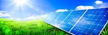 Solar Panels In Green Grass La...