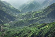 Misty Mountain Range Covered W...