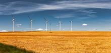 Windpark In Der Wüste Bardena...