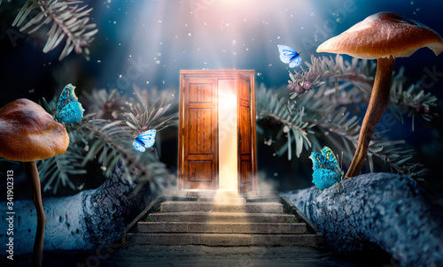 Fantasy enchanted fairy tale forest with magical opening secret door and stairs Canvas