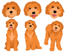 Set Of Cartoon Dog Breeds Gold...