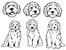 Set Of  Dog Breeds Goldendoodl...