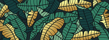Tropical Banana Leaf Background, Luxury Nature Pattern Design, Banana Leaf Line Arts Wallpaper, Hand Drawn Outline Design For Fabric , Print, Cover, Banner And Invitation, Vector Illustration.