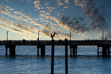 A Sillouette Of A Pelican And A Pier With Blue Sea And Sky
