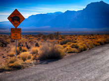 Warning Sign By Street At Red Rock Canyon National Conservation Area