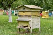 Yellow Beehive Box On Grassy Field
