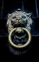 Close-up Of Lion Shaped Door Knocker