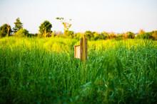 Birdhouse In Field Against Sky