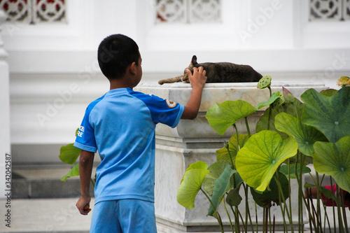 Child back stroking a cat in Bangkok Wallpaper Mural