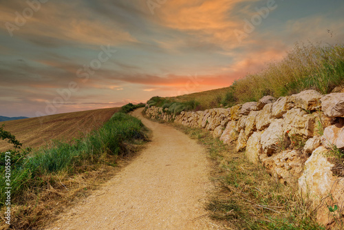 Leinwand Poster Sunrise on the Camino de Santiago through Navarra