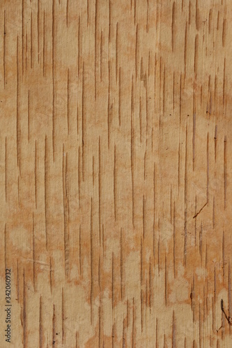 Photo Internal brown striped structure of a birchen bark background, copy space