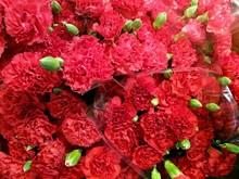 Full Frame Shot Of Red Carnation Flowers For Sale