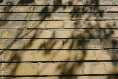 Apparent brick exterior wall with shadows of leafy tree branches on it Canvas Print