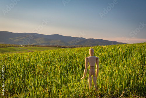 Photo Articulated little man stands in a field with an ascending cereal crop