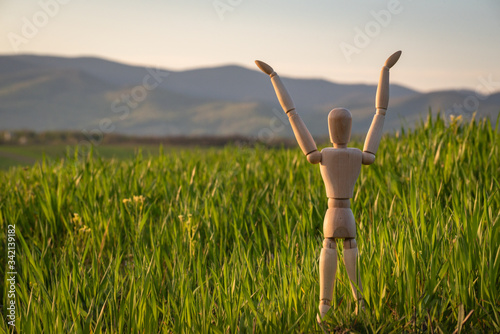 Articulated little man stands in a field with an ascending cereal crop Canvas Print