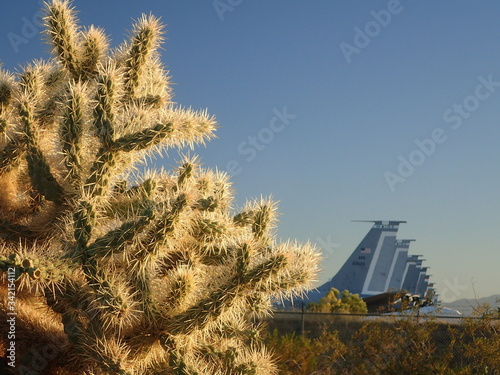 Cactus and Airforce airplanes Canvas Print