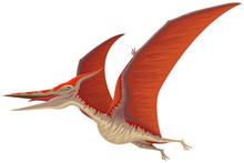 Vector Illustration Of A Pteranodon Flying Dinosaur.